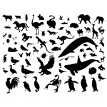Animal Silhouette Vector Pack