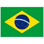 Brazil Flag [Brazilian]