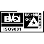 BVQI ISO 9001 Logo