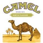 Camel Cigarette Logo