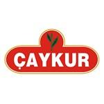 ÇAYKUR – Çay İşletmeleri Genel Müdürlüğü Logo