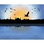 İstanbul Silüeti ve Martılar