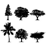Trees Silhouette 01