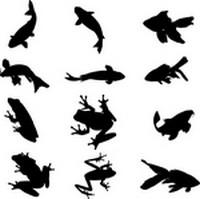 Aquatic Organisms Silhouettes