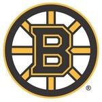 Boston Bruins Logo [NHL]