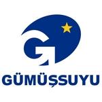 Gümüşsuyu Halı Logo [EPS]
