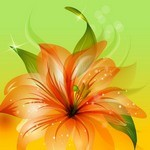 Flower Background 06
