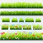 Grass, Flower