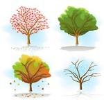 Tree 08