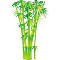 Bamboo and Grass Plant Vector 02