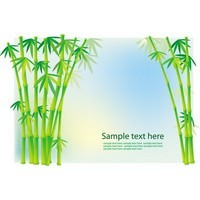 Bamboo and Grass Plant Vector 03
