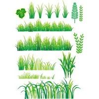 Bamboo and Grass Plant Vector 04