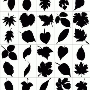 Leaf_Silhouettes