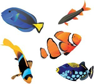fishes-21-01-2011