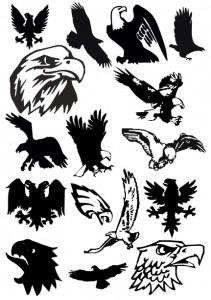 eagle-05-2011