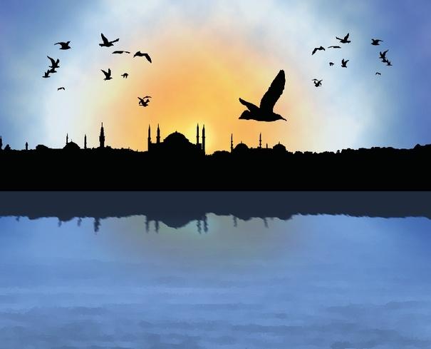 İstanbul Silüeti ve Martılar png
