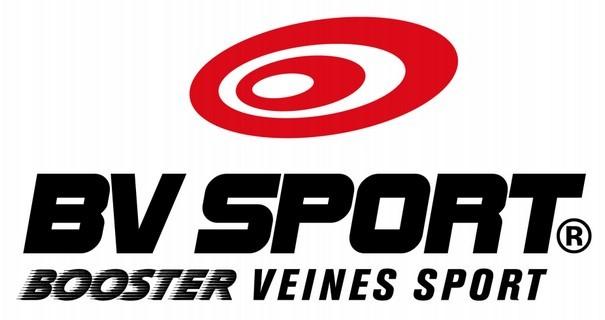 Bv Sport Logo png