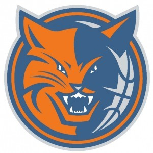 charlotte-bobcats-logo