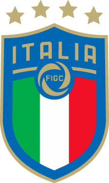 Italian Football Federation & Italy National Football Team Logo png