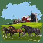 animals_horses