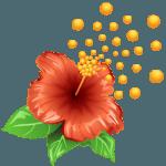 pollen_flower