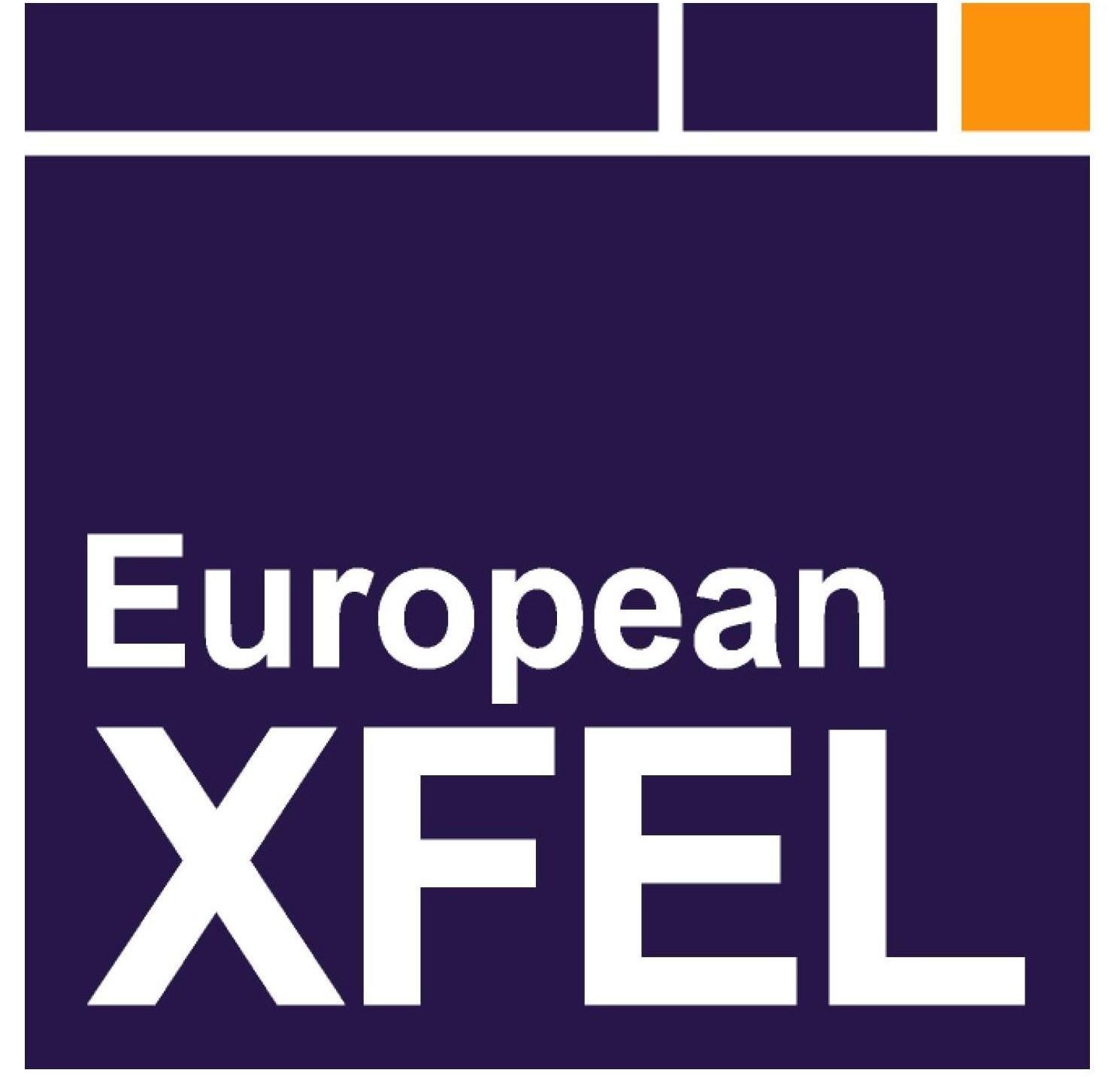 European XFEL   European x ray free electron laser logo [PDF] png
