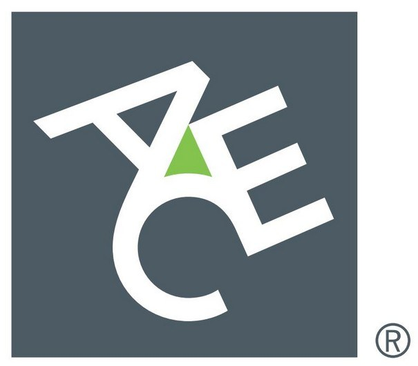 ACE Group Logo png