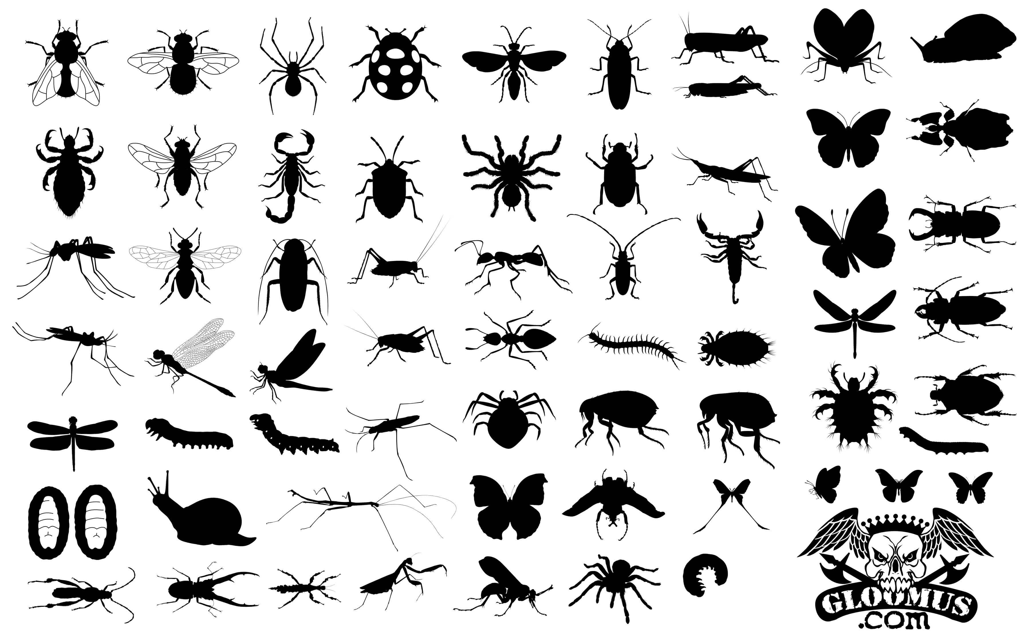 65 Insect Silhouettes png