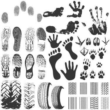 45-Footprints_Silhouette-vector1