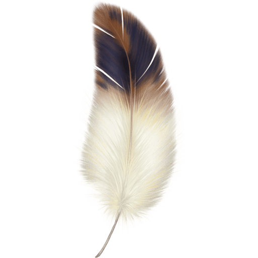 Beautiful Feathers 512×512 [PNG Files]