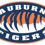 Auburn University Tigers2
