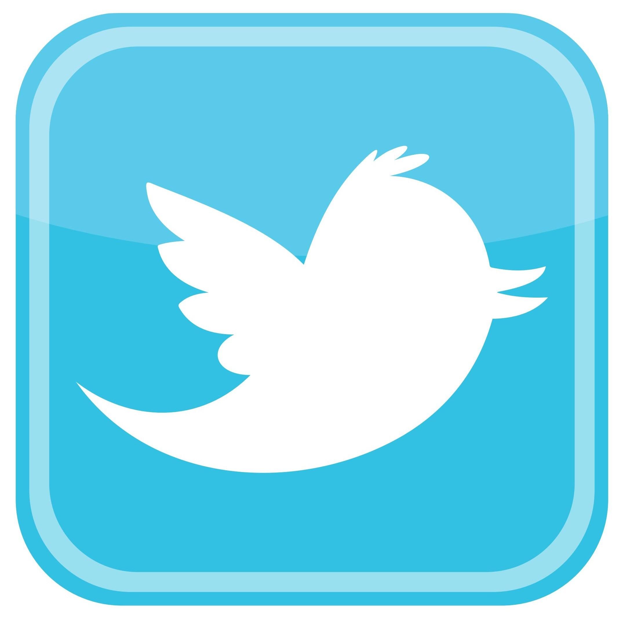 Twitter Bird Icon Logo png