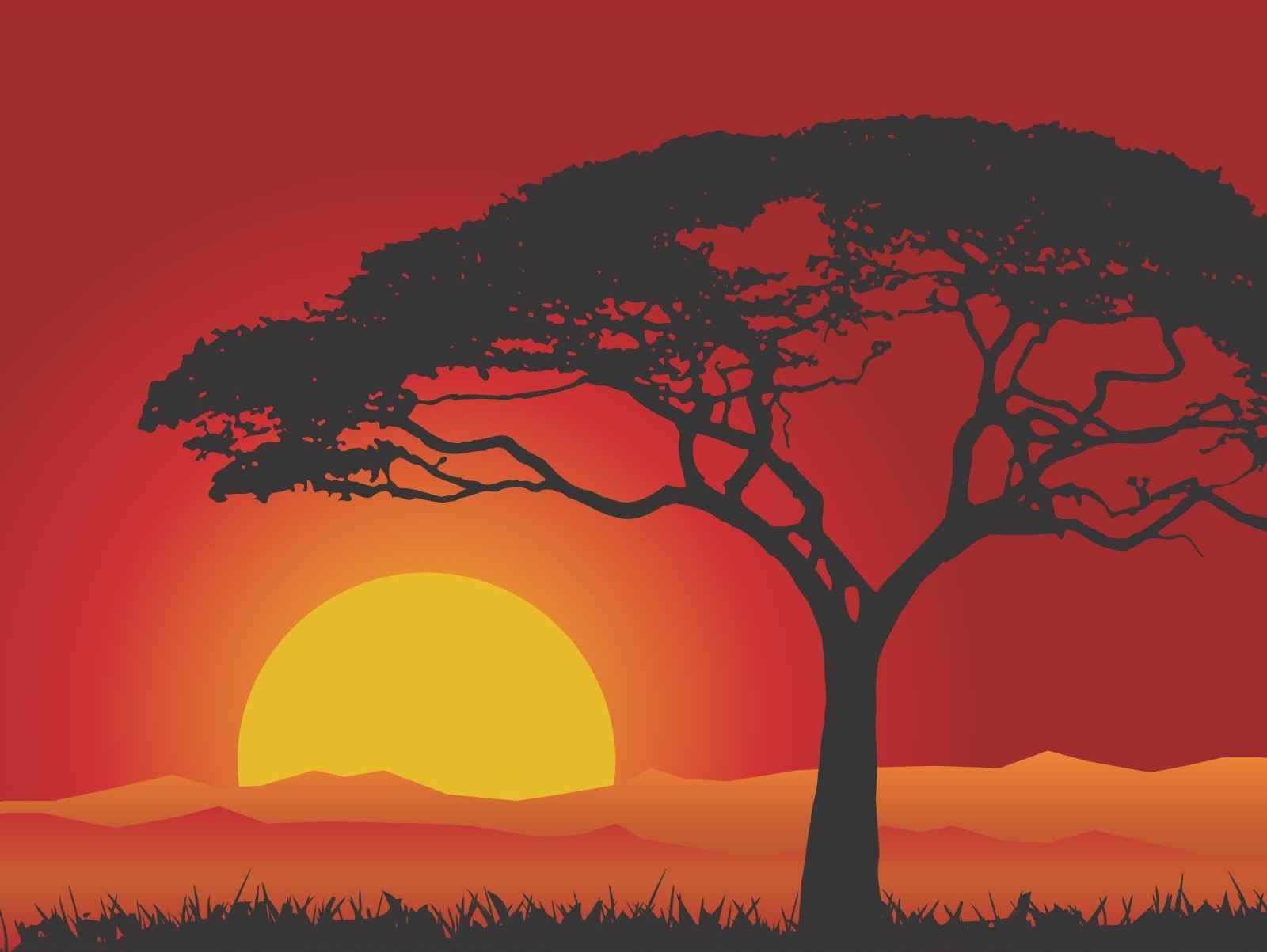 Sunset Landscape png