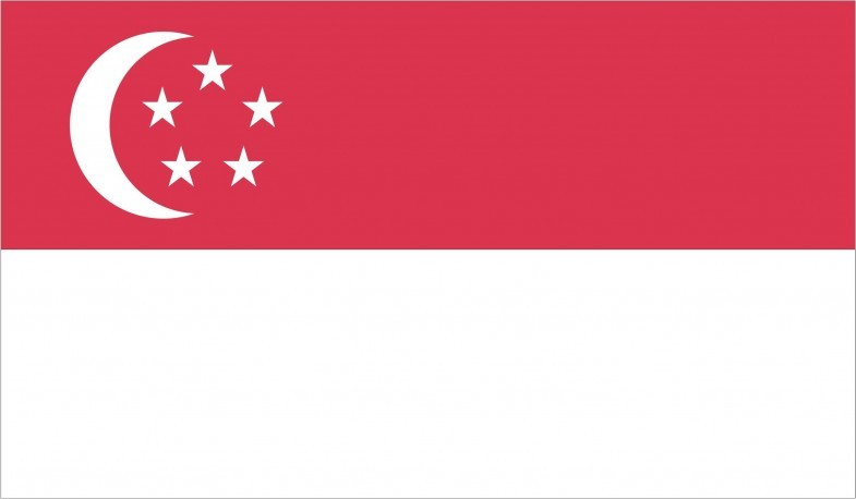 Singapore Flag png