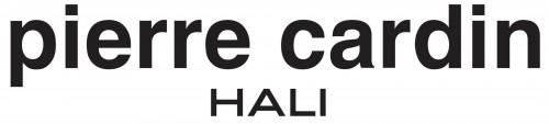 pierre-cardin-logo
