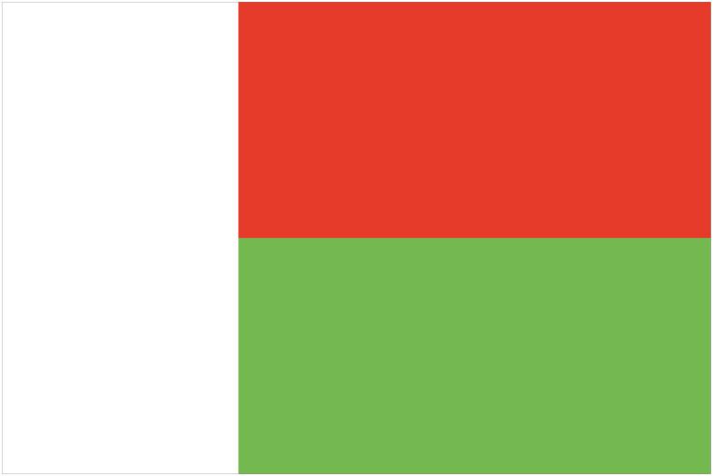 Madagascar Flag png