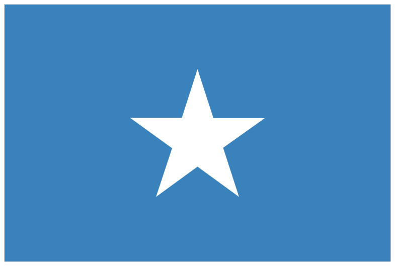 Somalia Flag 785x529 vector