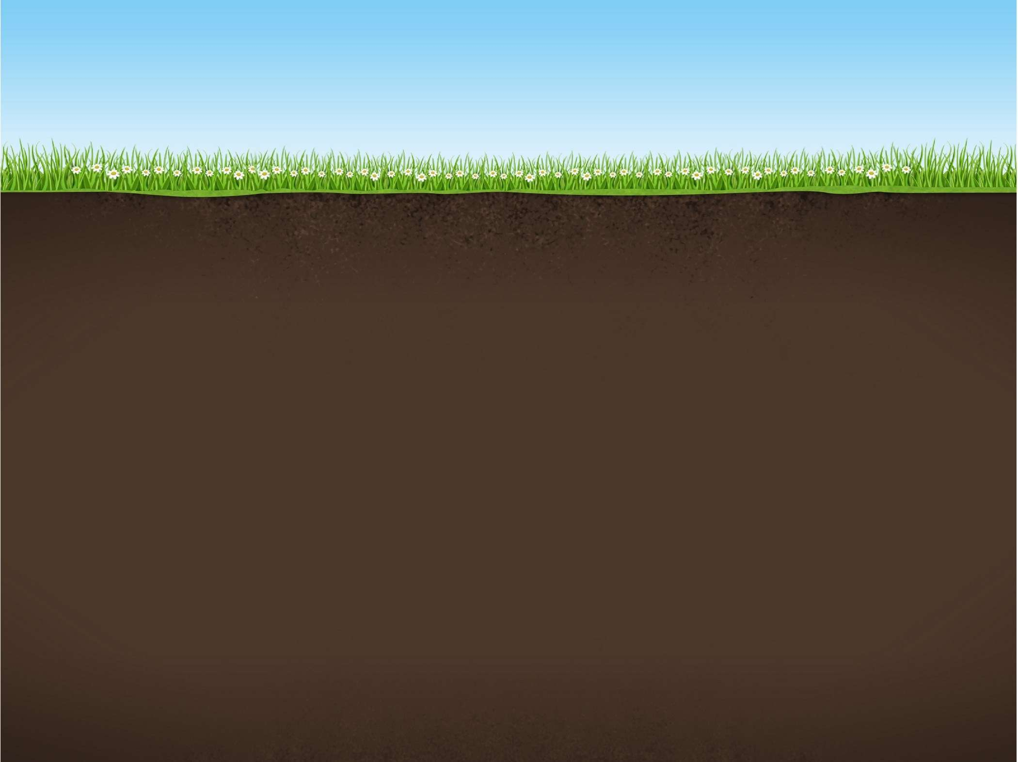 Nature_Background_with_Sky_Grass_and_Earth