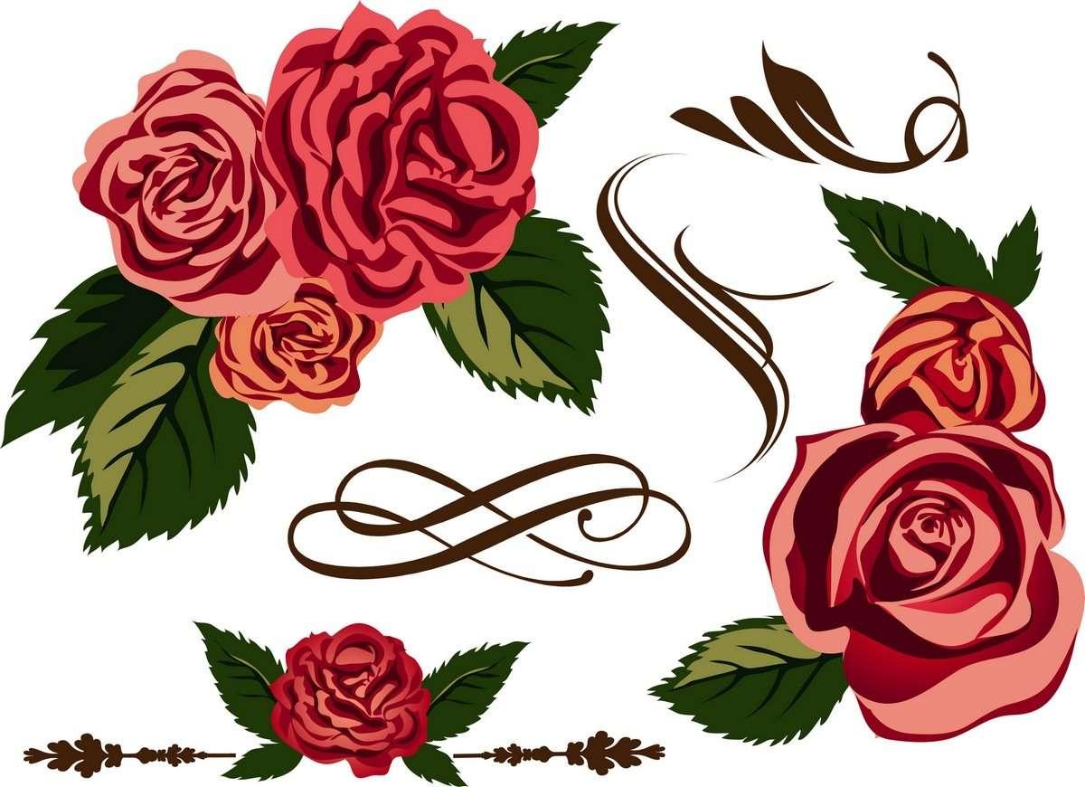 Rose 02 png