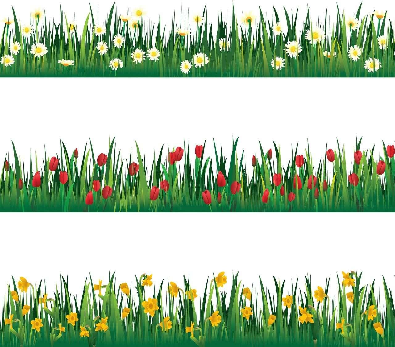 Flower, Tulip, Grass png