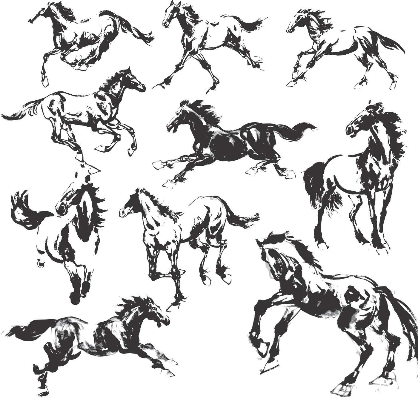 Horse Silhouette png