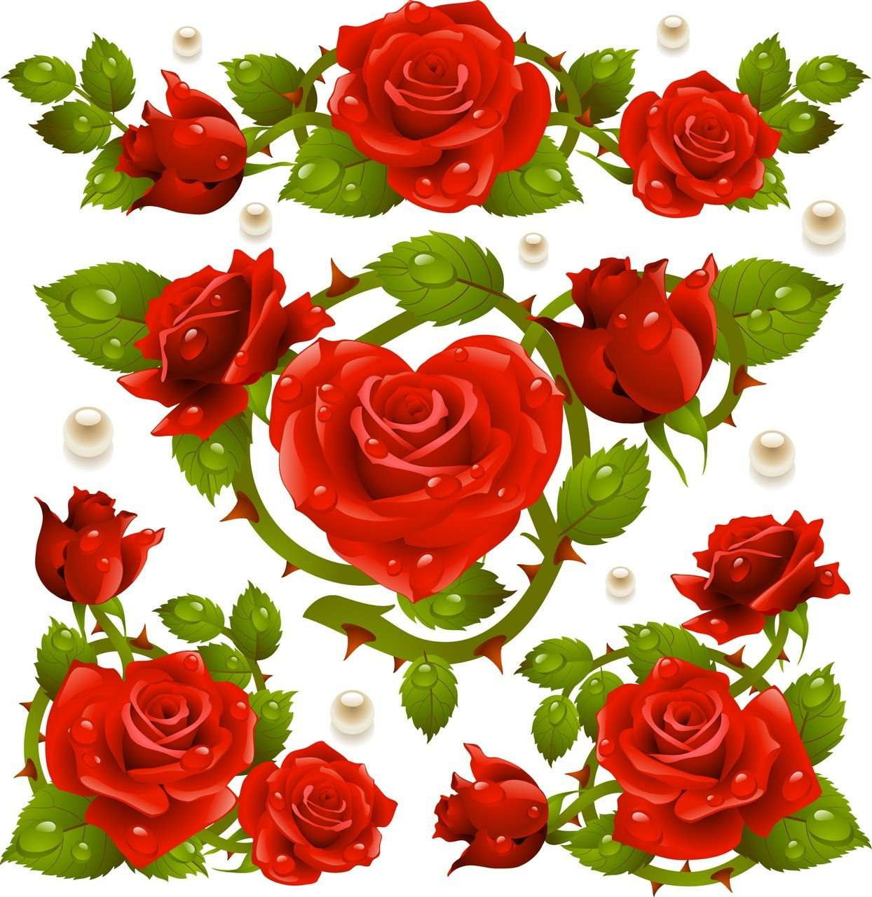 Rose 05 png
