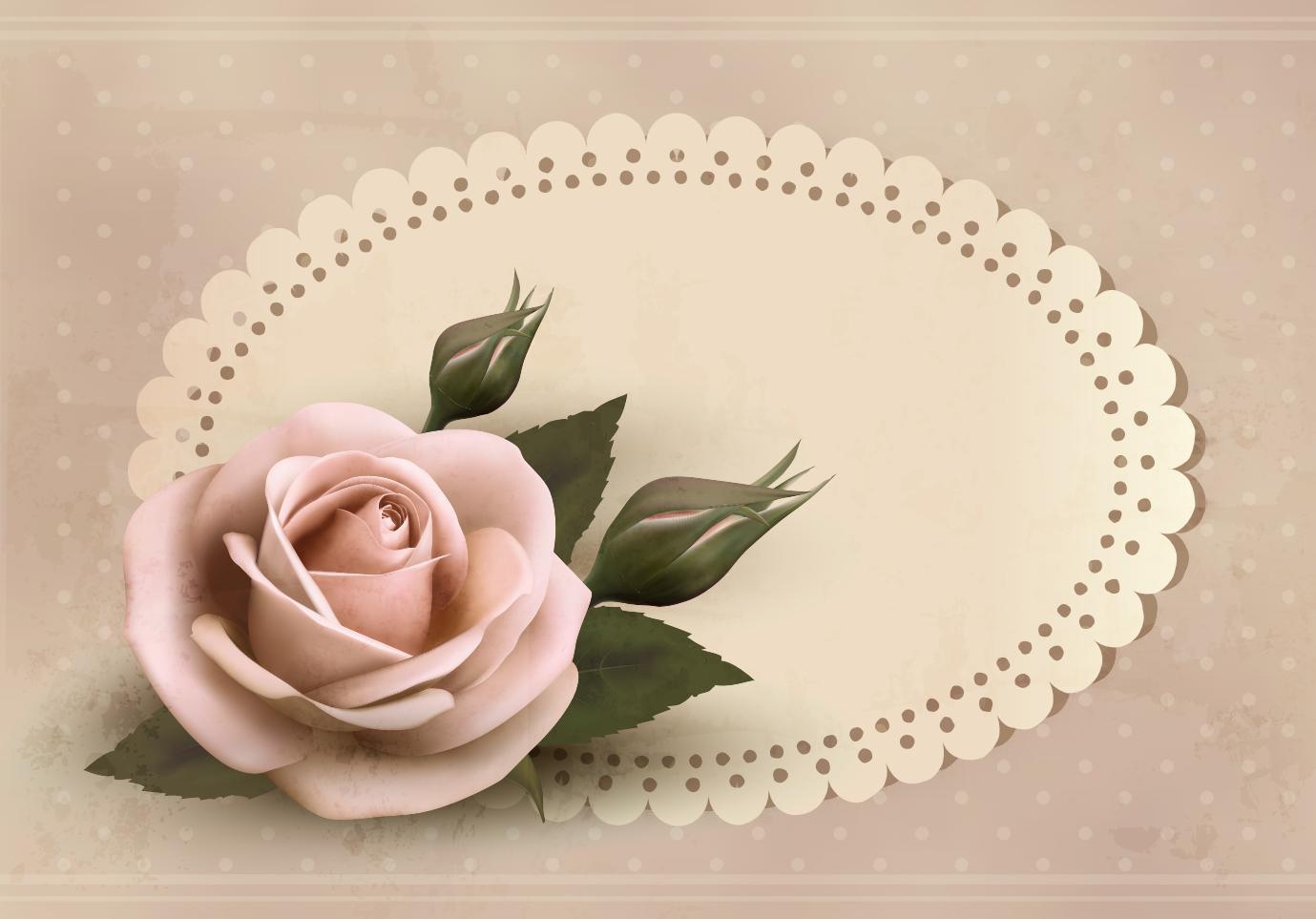 Rose Background, Frame 01