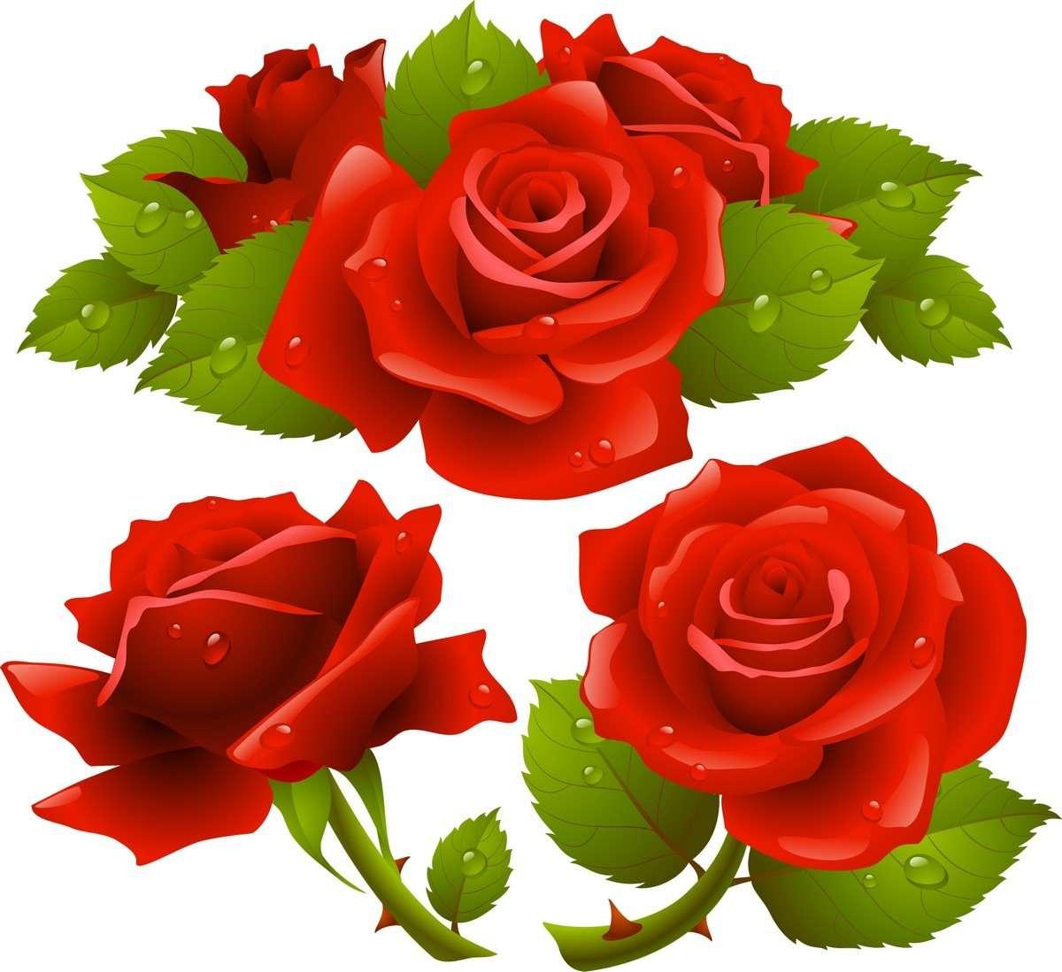 Rose 06 png