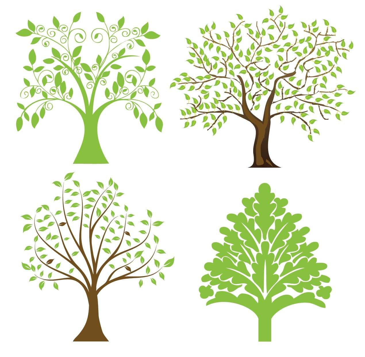 Tree 04 png