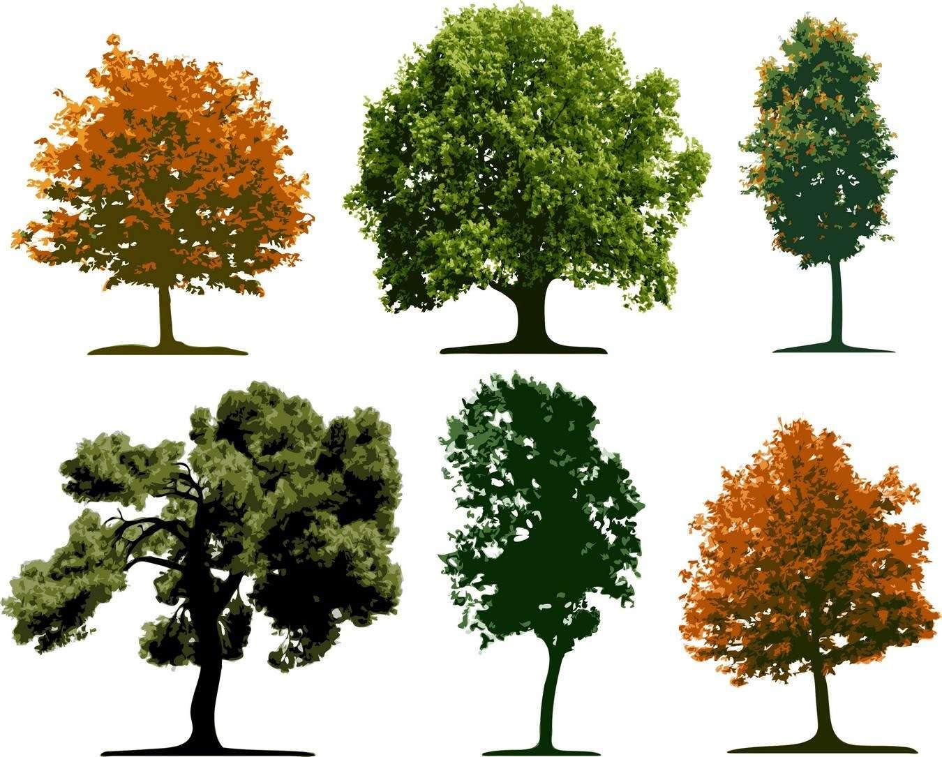 tree05