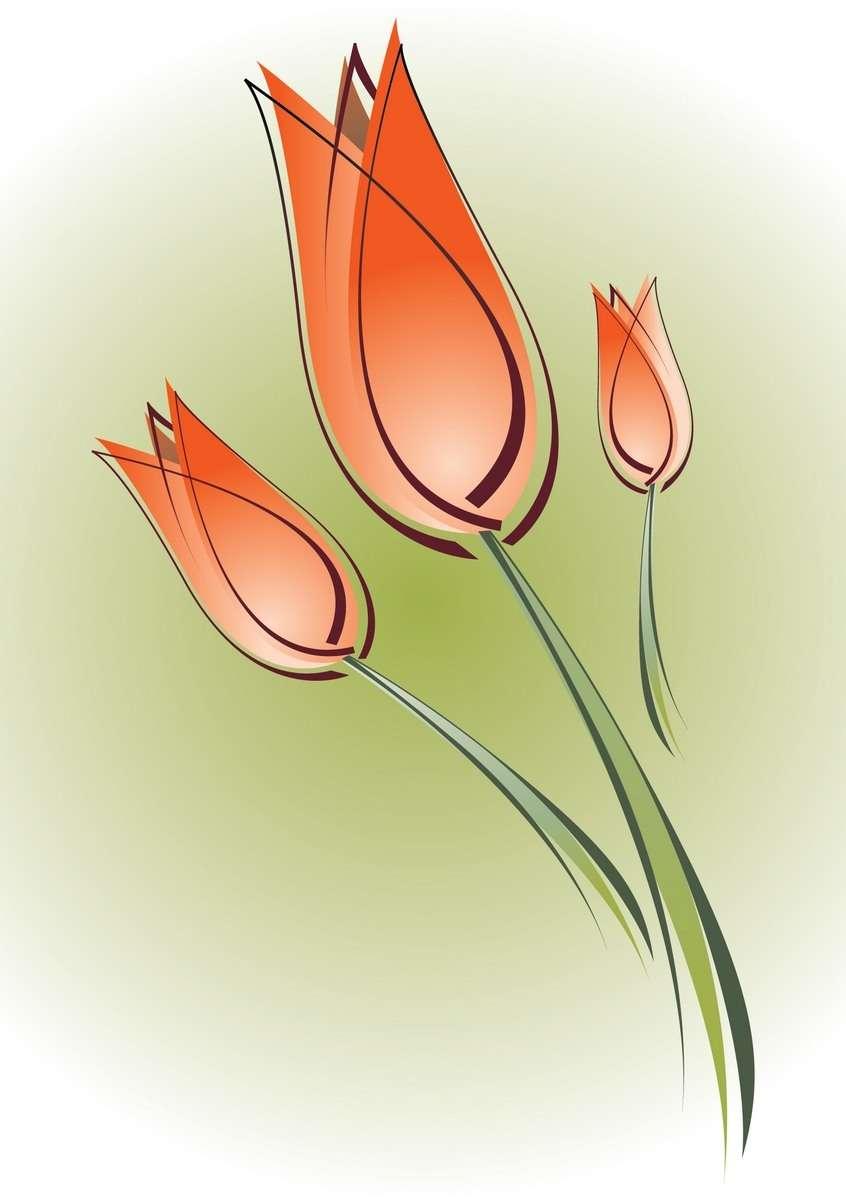 Flower, Tulip png