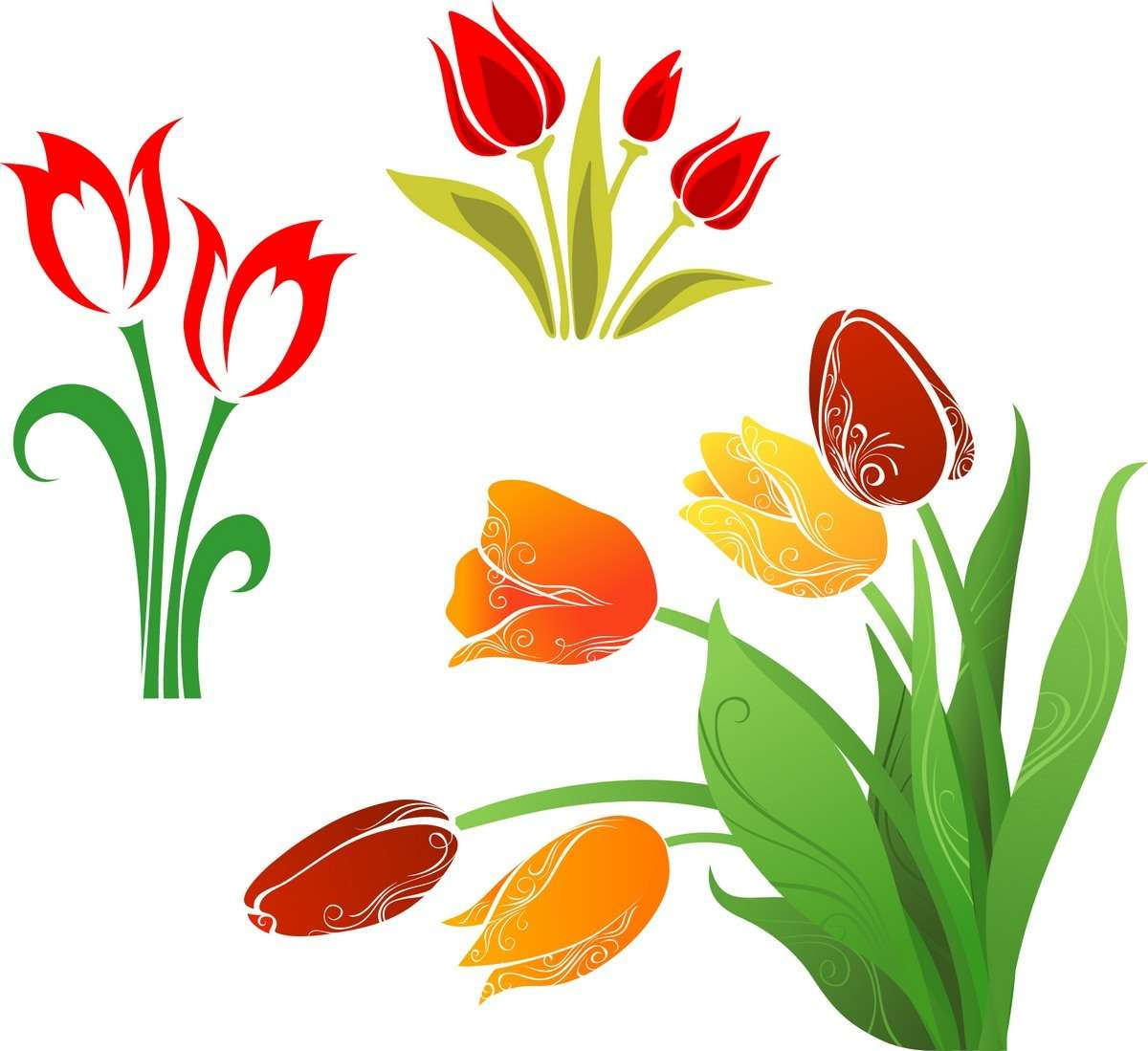 Flower, Tulip 01 png
