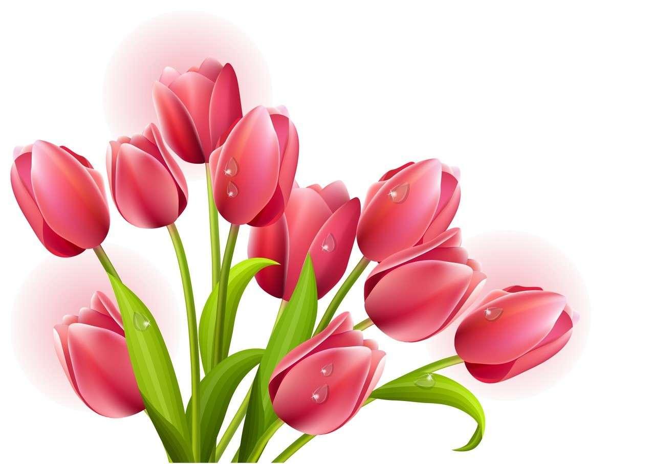 Flower, Tulip 03 png