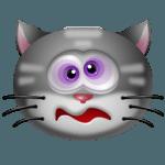 Cat Dizzy